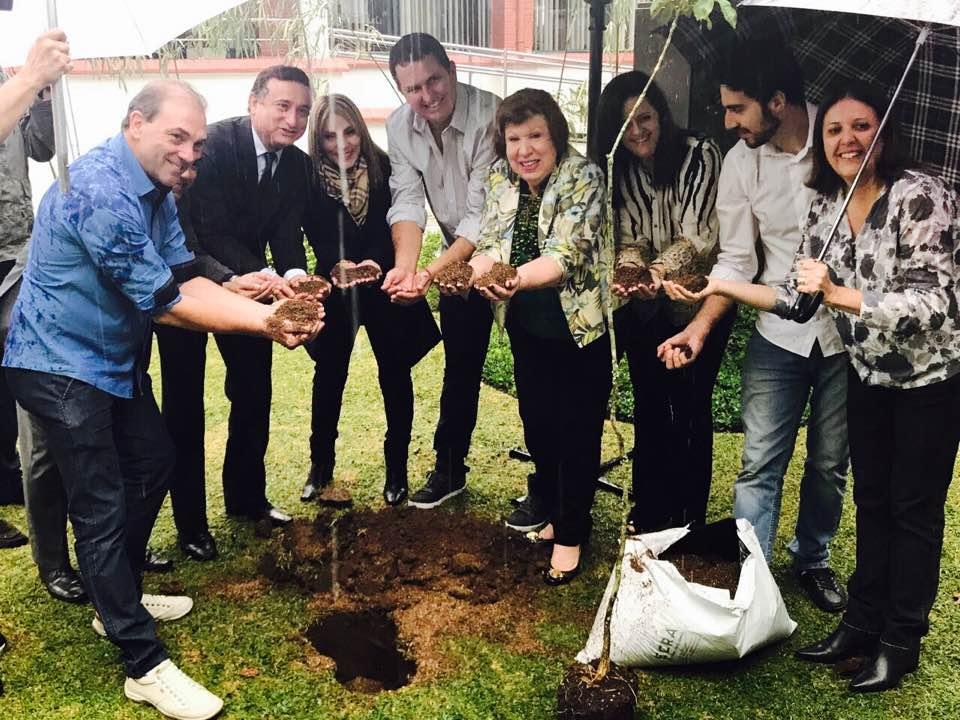 Dia Mundial do Meio Ambiente é celebrado com plantio de árvores