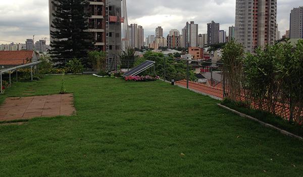 Laje Verde ou Telhado Verde - ECRA sustentabilidade Urbana