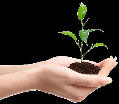 Projeto de Conscientização Ambiental Urbana - ECRA Sustentabilidade Urbana
