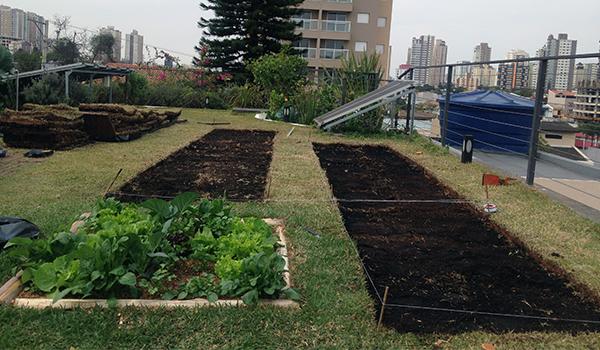 Projeto Horta em Casa - Curso de Capacitação em Agricultura Urbana
