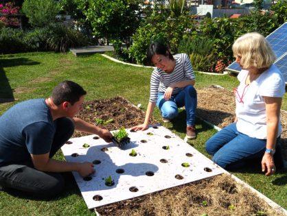 Experiência Completa ECRA - Palestra com Prática de Agricultura Urbana em Laje Verde