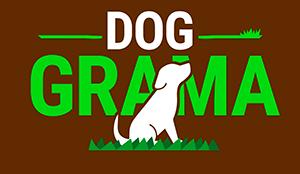 Dog Grama - O módulo de grama natural perfeito para o seu cachorro!